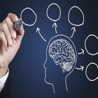 روانشناسی نیازها وامیال پایه ای انسان