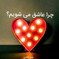 چرا عاشق می شویم ( بر اساس روانشناسی عشق)