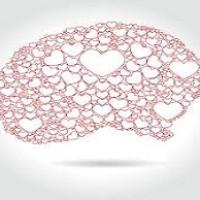 تاثیر عشق بر مغز
