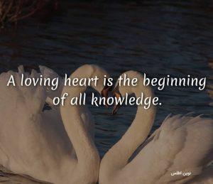 عکس نوشته پروفایل با متن انگلیسی در باره قلب عاشق